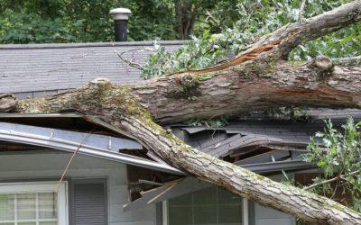 Property Insurance Claims (Burglary, Fires, Money Loss, Glass Breakage)