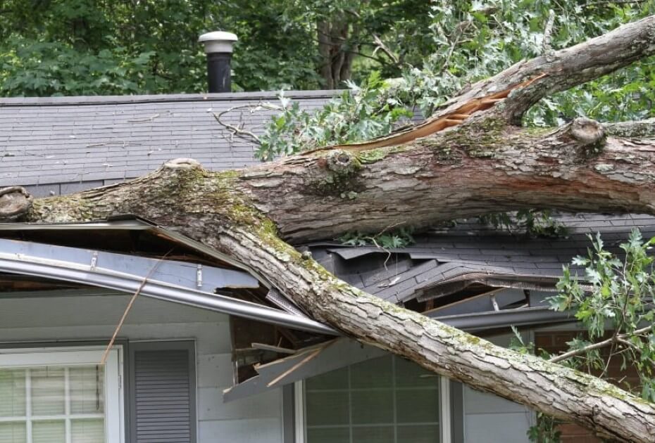 Small Property Insurance Claims